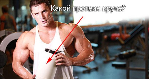Вред или польза протеина