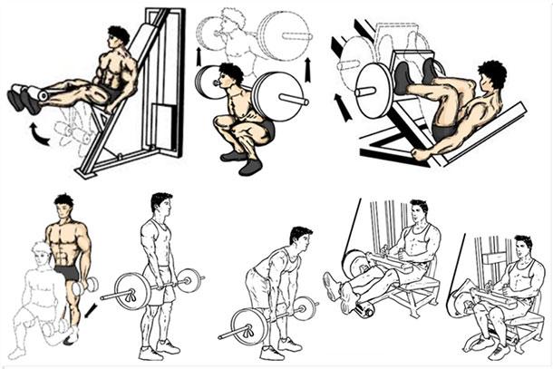 Тренируем ноги