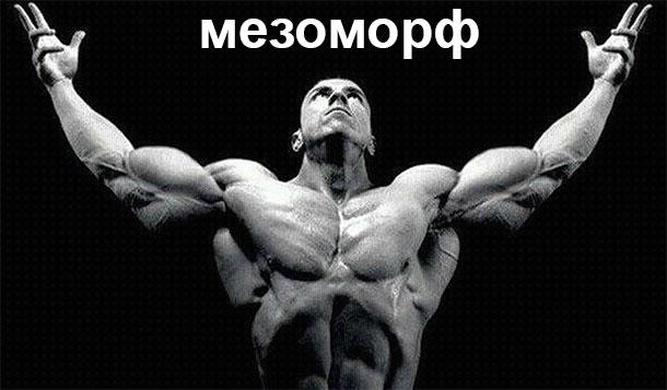 Мезоморф