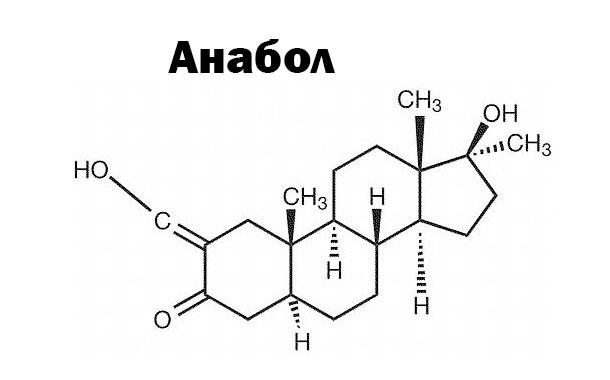 Анабол